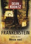 Frankenstein 2 - Město noci