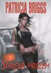 Mercedes Thompson 07 - Spálená mrazem