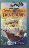 Téměř ctihodná liga pirátů 1 - Poklad čarodějky ze severu