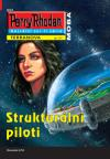 PR 111: Strukturální piloti