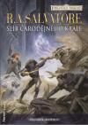 Forgotten Realms: Žoldáci 2 - Slib čarodějného krále