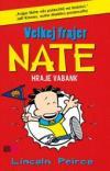 Velkej frajer Nate 4: Hraje vabank